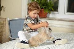 copil jucandu-se cu un iepure